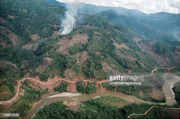 Amazon Peru Satipo To Puerto Prado Road Destruction Along The Road Roads through the Amazon whether for transport or logging open up the jungle to...