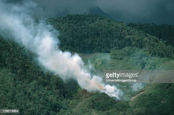 Amazon Peru Vicinity Satipo Deforestation Slash And Burn Migrant Farmer Cleaning Land The whole valley once forested have been cleared and only the...