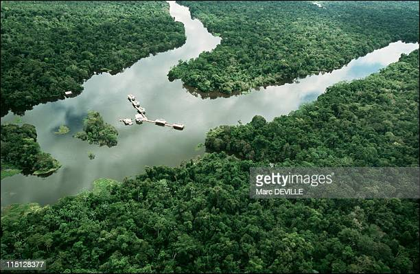Amazon rain forest Despina Chronopoulos explorer of Mamiraua the world's largest nature reserve in Brazil in April 2002 Aerial view of Mamiraua...