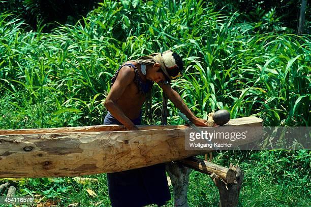 Amazon River Javaro Indian Carving Dugout Canoe
