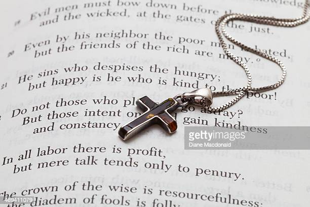 Amber and Silver Cross Necklace on Open Bible