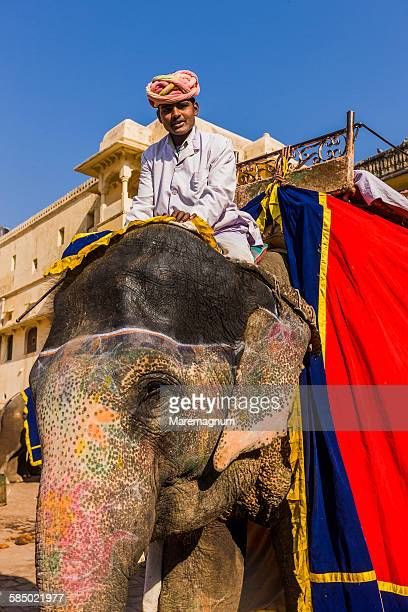Amber Fort Palace, elephant and mahout