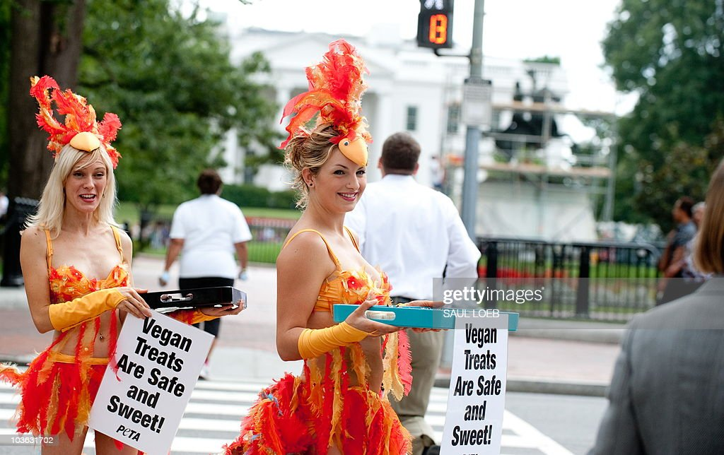 Amber TeGantvoort (L) and Ashley Byrne (C) of the People for the Ethical Treatment of Animals (PETA), dressed as a scantily-clad 'chicks' and wearing feathered bikinis, hand out egg-free cupcakes and pamphlets with egg-free recipes to passers-by near the White House in Washington, DC, August 25, 2010. The group is trying to bring attention to egg-free options following the recall of more than half a billion eggs during a salmonella outbreak throughout the US. AFP PHOTO / Saul LOEB