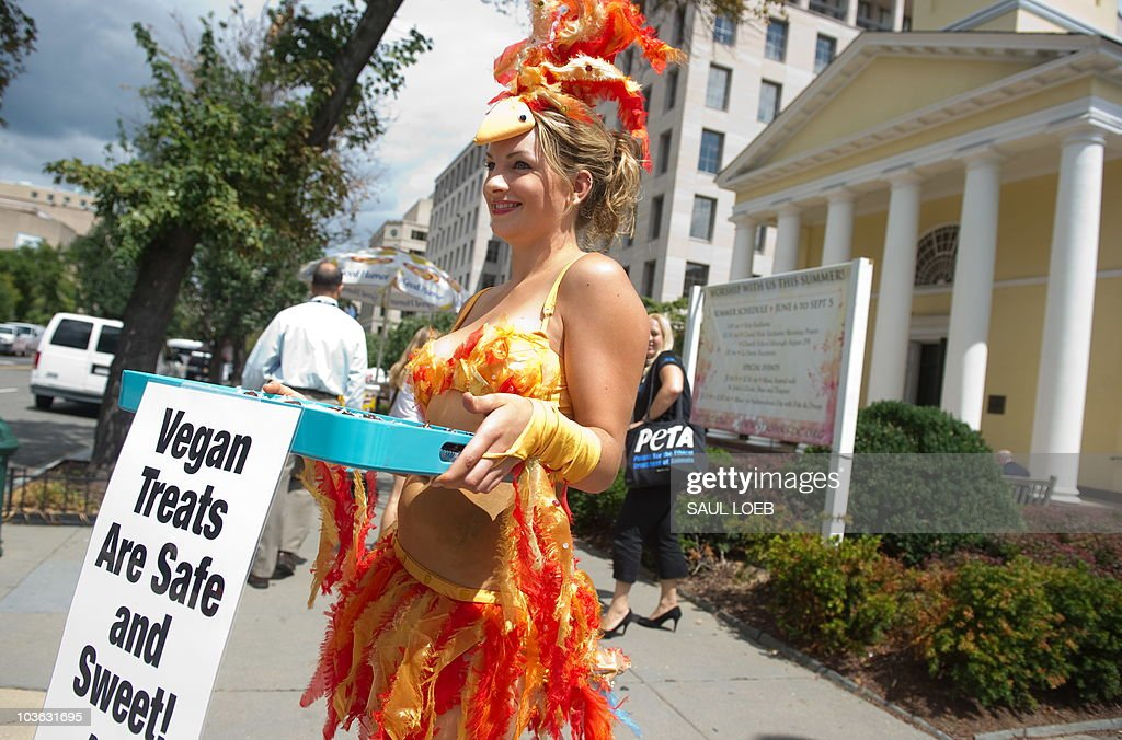 Amber TeGantvoort of the People for the Ethical Treatment of Animals (PETA), dressed as a scantily-clad 'chick' and wearing a feathered bikini, hands out egg-free cupcakes and pamphlets with egg-free recipes to passers-by near the White House in Washington, DC, August 25, 2010. The group is trying to bring attention to egg-free options following the recall of more than half a billion eggs during a salmonella outbreak throughout the US. AFP PHOTO / Saul LOEB
