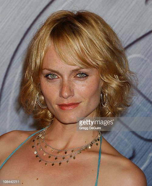 Amber Valletta during 'Hellboy' Los Angeles Premiere Arrivals at Village Theatre in Westwood California United States