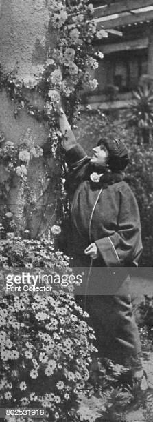 Amelita GalliCurci The great diva gathering roses her favourite flowers' c1925 Amelita GalliCurci Italian soprano From Cassell's Romance of Famous...