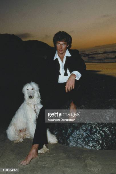 American actor David Hasselhoff circa 1990