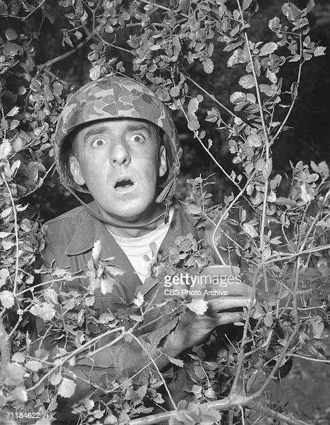 American actor Jim Nabors wearing an illfitting camouflage helmet hides in a bush a look of shock on his face in a scene from an episode of the...