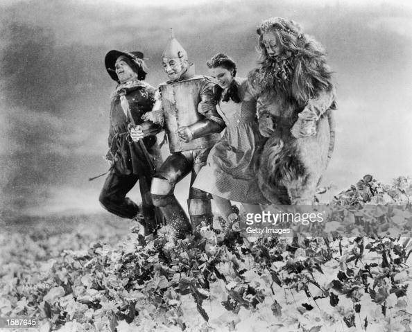 American actors Ray Bolger Jack Haley Judy Garland and Bert Lahr run arm in arm through a field of poppies in a still from the film 'The Wizard of...