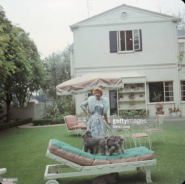 American actress and comedienne Lucille Ball plays with her dogs in the back garden of her home Los Angeles California late 1950s