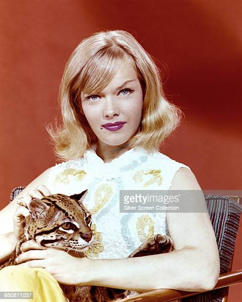 American actress Anne Francis as private detective Honey West with her pet ocelot Bruce in the television series 'Honey West' circa 1965