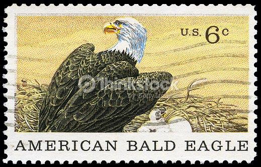 American Bald Eagle Stamp Stock Photo