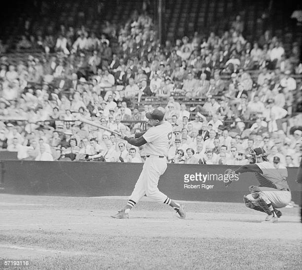 American baseball player Ted Williams of the Boston Red Sox swings at a pitch during a game at Fenway Park Boston Massachussetts 1958