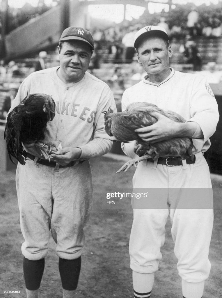 American baseball players Babe Ruth of the New York Yankees and Walter Johnson of the Washington Senators each pose with their prizewinning roosters...