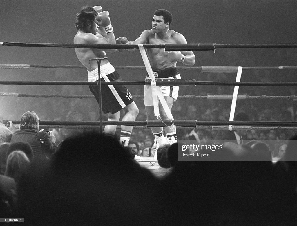 American boxer Muhammad Ali fights Uruguayan Alfredo Evangelista in a Heavyweight Championship bout at the Capital Centre Landover Maryland USA May...