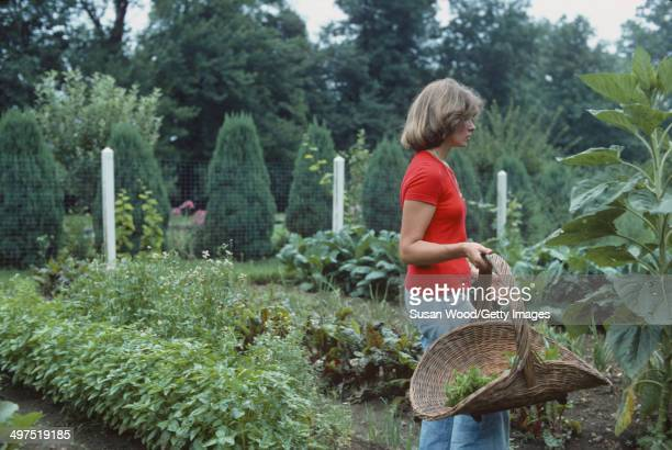 American businesswoman Martha Stewart carries a backet of greens as she walks through a vegatable garden on the grounds of her home Westport...
