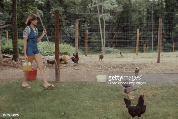 American businesswoman Martha Stewart carries a basket of eggs and a net as she herds geese on the grounds of her home Westport Connecticut August...
