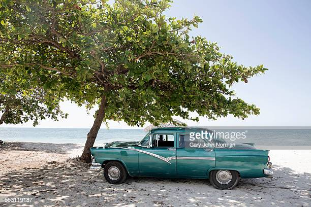 American car parked under tree, Cuba