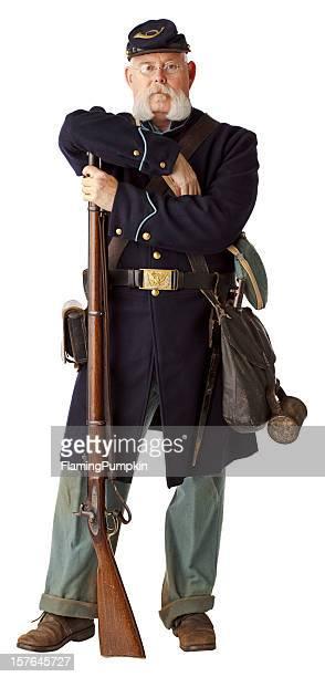 アメリカ南北戦争ユニオンミナミコメツキ、白で分離。