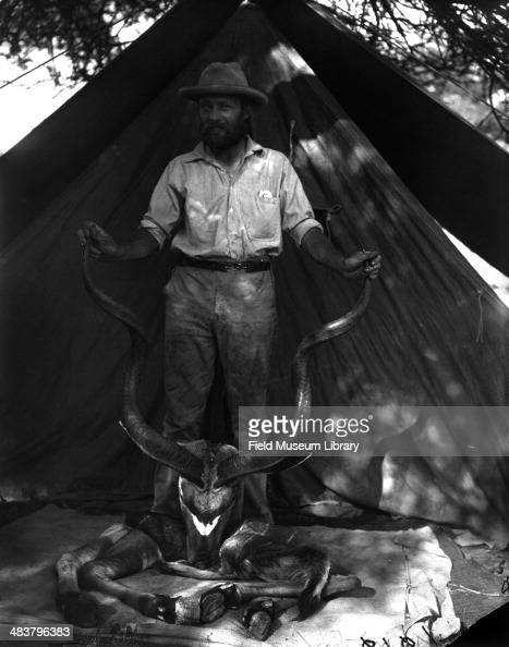 American conservationist photographer and taxidermist Carl Akeley poses the with skull horns and hoofs of a greater kudu zoology specimen Woqooyi...