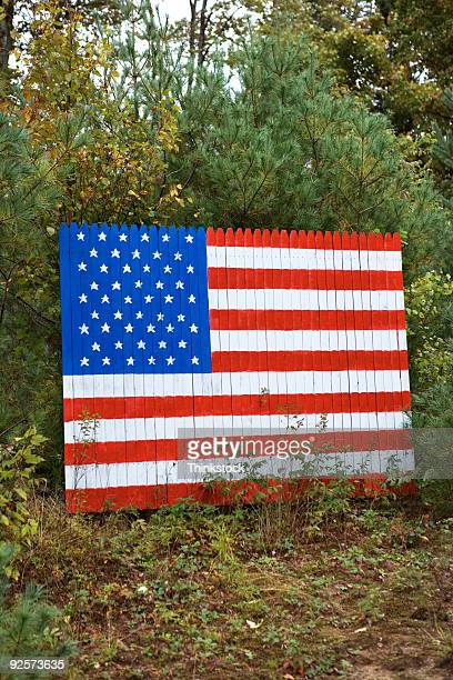 American Flag in forest