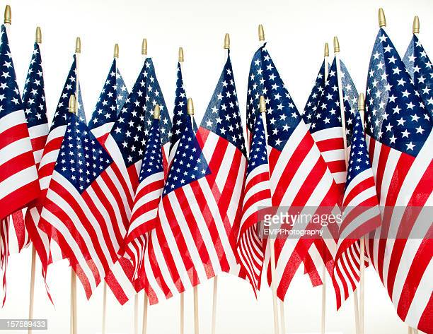 American Flags In a Row Isolated on White