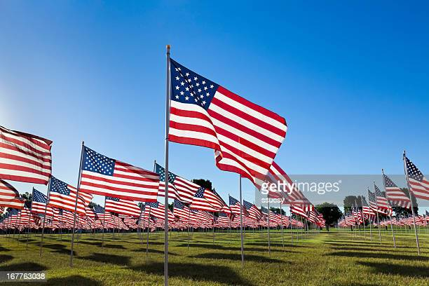 Bandeiras americanas com céu azul