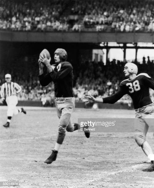 American football player Samuel 'Slinging Sammy' Baugh quarterback for the Washington Redskins from 1937 1952 holds on to the ball 1940s