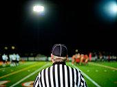 American football referee on field, rear view