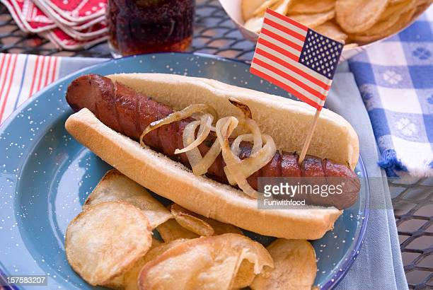 American July Fourth & Labor Day Patriotic Barbeque Hot Dog Picnic