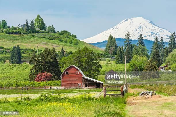 American red barn in green farmland below Mt Adams USA