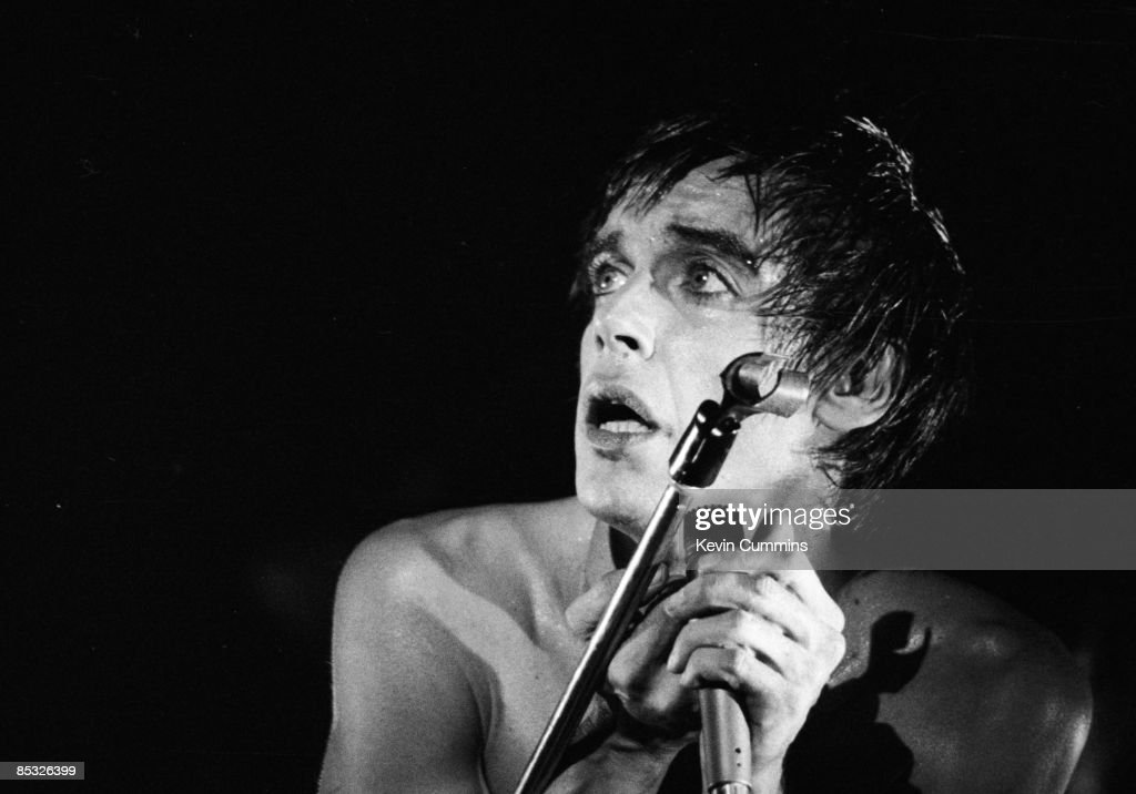 Image result for iggy pop lust for life tour images