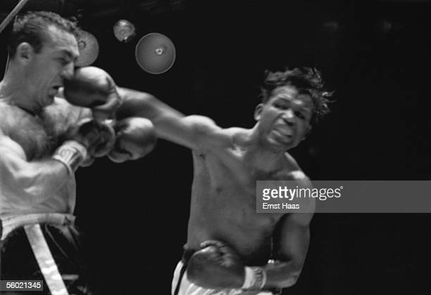 American Sugar Ray Robinson lands a punch on the nose of Carmen Basilio during their World Middleweight title rematch at Chicago Stadium 25th March...