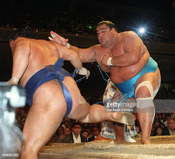 American yokozuna Musashimaru pushes ozeki Kaio out of the ring to win the bout and the tournament during day fourteen of the Grand Sumo Autumn...