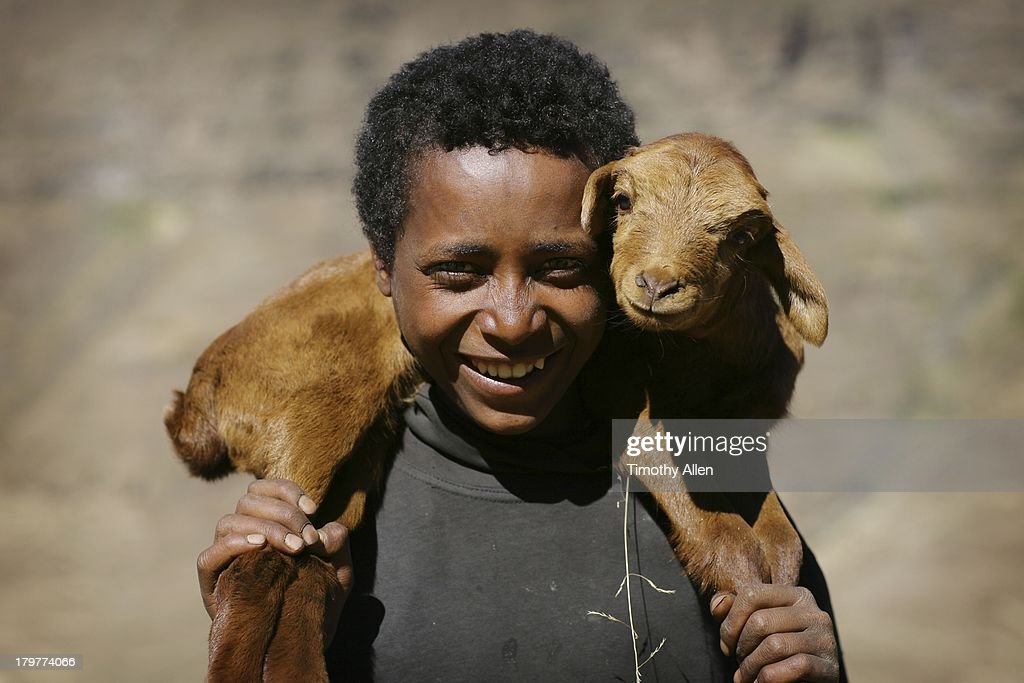 A smiling Amharic boy holds a kid (goat) on his shoulders in the Semien Mountains ( Simien Mountains, Simen Mountains). Location: Simien Mountains National Park, Semien (North) Gondar Zone, Amhara Region, Ethiopia