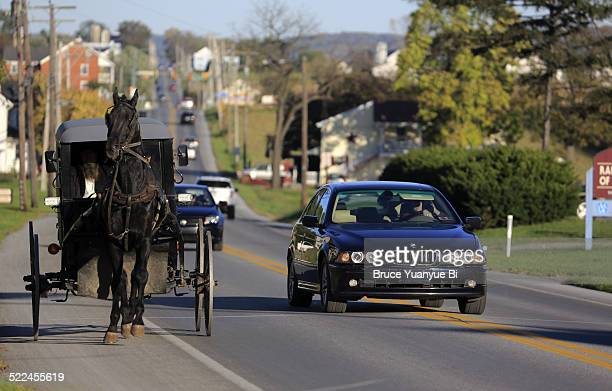 Amish buggy on country road