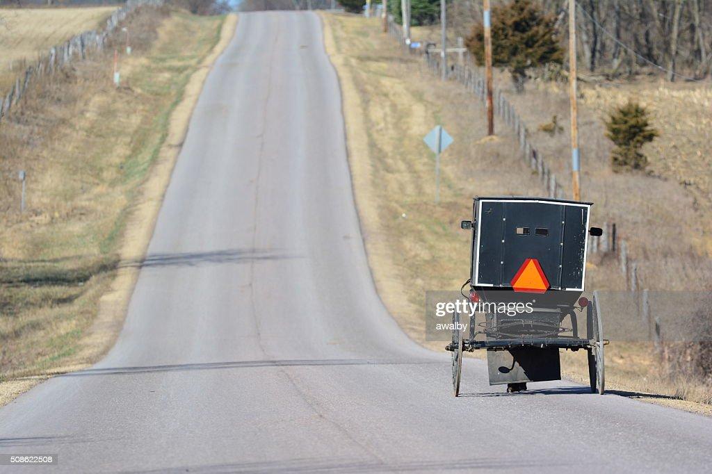 Amish Buggy on Road : Stock Photo