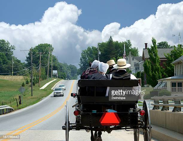 Amish courtiser Buggy