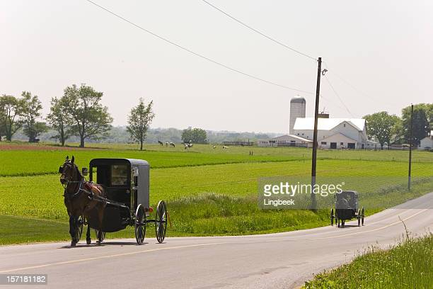 Amish in market wagons
