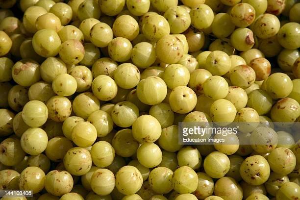 Amla Indian Gooseberry Herbal Medicinal Fruit India