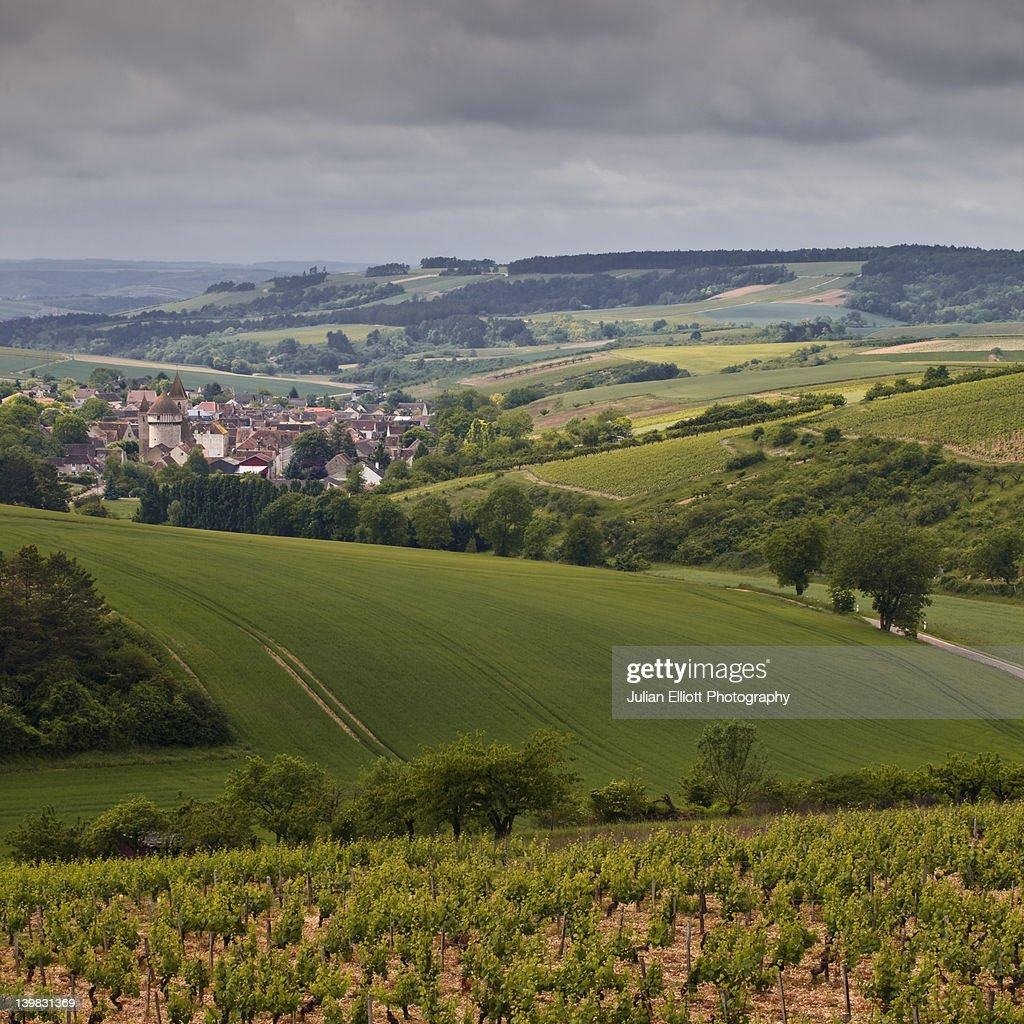 Among the rolling fields and vineyards Chitry-le-Fort, France. The small village is in the region of Burgundy. : Stock Photo