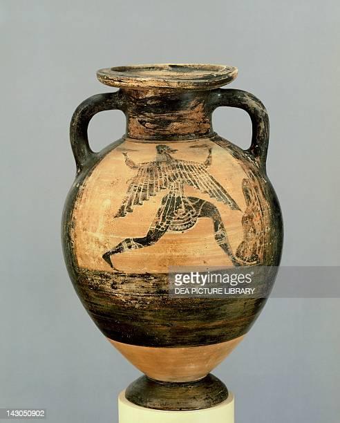 Amphora Blackfigure pottery from Tarquinia Etruscan civilization 6th Century BC Geneva Musée D'Art Et D'Histoire