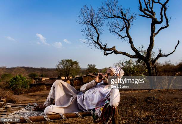 Amra Vejabhai a Maldhari shepherd who lives with his family in a Maldhari community inside Gir Wildlife Sancturary home to the Asiatic lion the last...