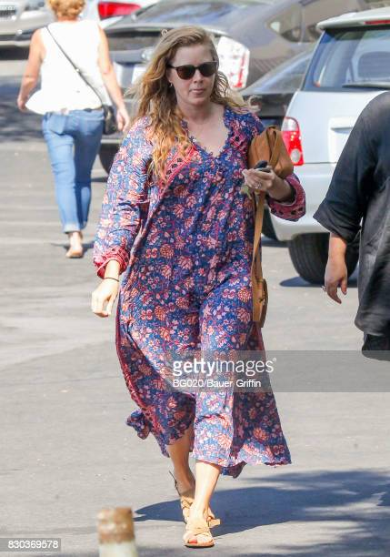 Amy Adams is seen on August 11 2017 in Los Angeles California