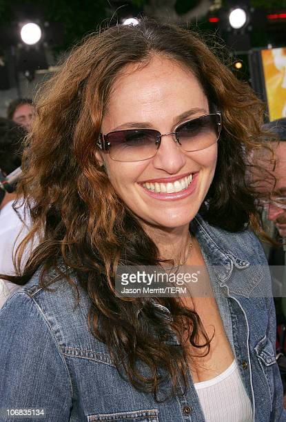 Amy Brenneman during Dreamworks Pictures' 'Dreamer Inspired By A True Story' Los Angeles Premiere Arrivals at Mann Village Theatre in Hollywood...