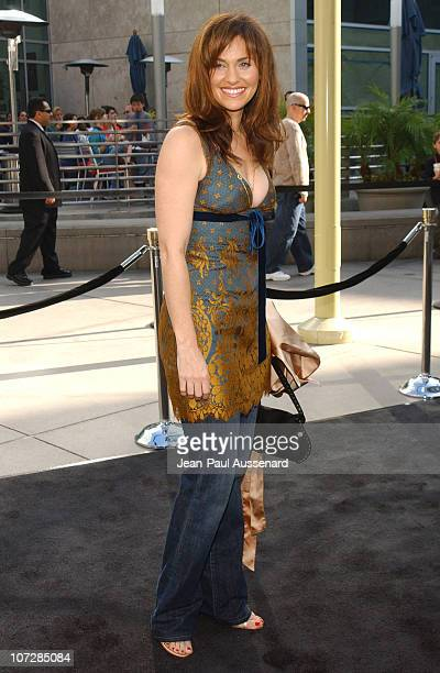 Amy Brenneman during 'Lemony Snicket's A Series of Unfortunate Events' Los Angeles Premiere Arrivals at Cinerama Dome in Hollywood California United...