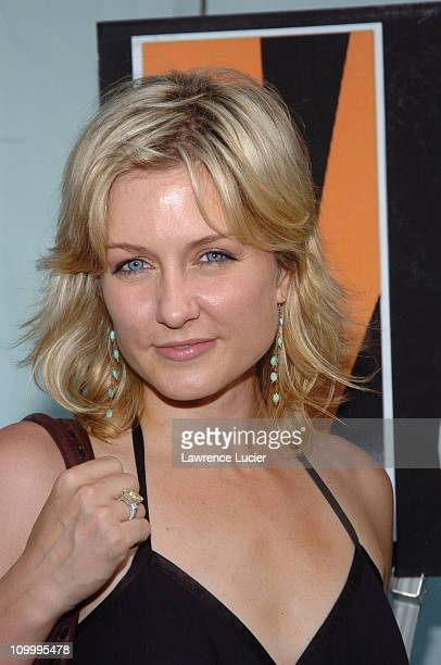 Amy Carlson during The Aristocrats New York City Premiere at DGA Theater in New York City New York United States
