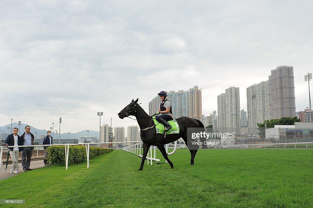 Amy Doran riding King Mufhasa during a trackwork session at Sha Tin racecourse on May 3, 2013, ahead of the Champions Mile this Sunday in Hong Kong, Hong Kong.