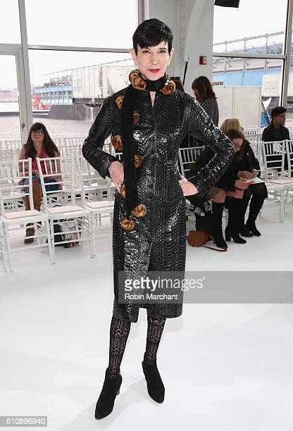 Amy Fine Collins attends Delpozo during Fall 2016 New York Fashion Week at Pier 59 Studios on February 17 2016 in New York City
