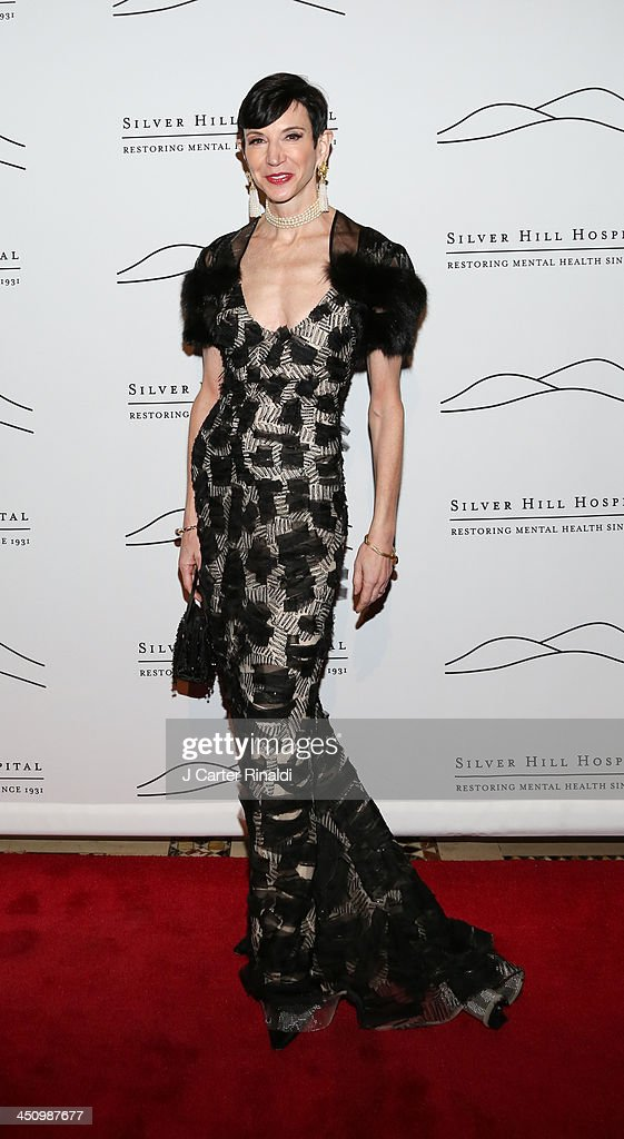 Amy Fine Collins attends the 2013 Silver Hospital gala at Cipriani 42nd Street on November 20, 2013 in New York City.